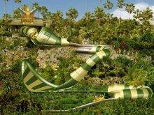 image snake-5-jpg